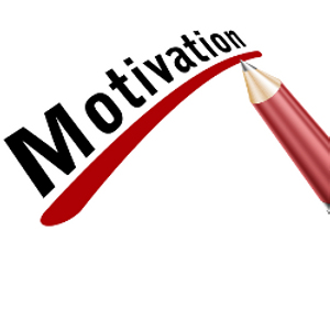 """how to motivate fred Analyze what schering-plough and jim reed did to motivate fred, why it did or did not work, etc in a separate section entitled """"recommendations"""", i would also like you to recommend some other things that the company and jim reed could have done to increase fred's motivation and how they could have handled the situation better."""